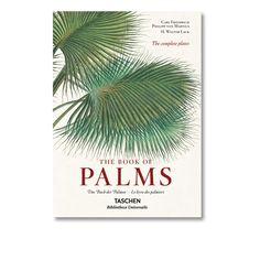 Le Livre des Palmiers - Taschen - Une véritable encyclopédie botanique qui magnifie le palmier. Plongez dans le bassin de l'Amazonie à travers 240 illustrations chromolithographiques de palmiers qui font de cette édition un objet de collection à part entière. Un véritable trésor encyclopédique qui établit la classification de cet arbre fascinant, resurgissant aujourd'hui dans les motifs de décoration.
