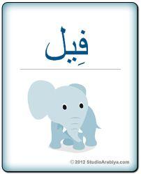 Elephant | فيل