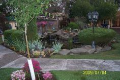 My husband and I built this pond from below ground up! It took us thre…