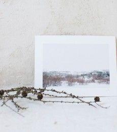 LuciaMphoto15_WinterWhiteness_091