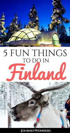 Winter In Finland: From Northern Lights To Ice HotelsThere's no more magical time to travel to Finland than in winter. Beautiful nature, snowy landscapes, Christmas markets, igloos & ice hotels, and…More Europe Destinations, Europe Travel Tips, European Travel, Budget Travel, Travel Ideas, Finland Travel, Finland Trip, Ice Hotel, Wanderlust