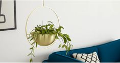 Search results for: 'plant pots' Pot, Office Decor, Garden Furniture, Furnishings, Potted Plants, Large Hanging Planters, Industrial Trend, Dream Garden, Rug Shopping