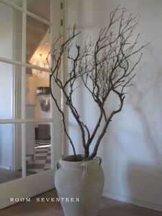 Image result for bare branches in an urn