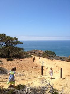 easy hikes for families: torrey pines (san diego)