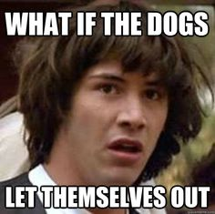 what if ??