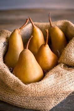Seasonal autumn pears simply cuddled in rustic burlap.  A perfect fall centerpiece.