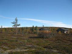 Kaunispää syksyllä (26) | Saariselkä. Saariselän mökit ja ohjelmapalvelut #saariselkä #saariselka #saariselankeskusvaraamo #lapland #astueramaahan #stepintothewilderness #saariselkaMTB http://www.saariselka.com