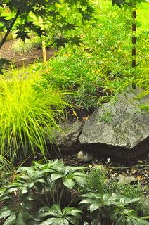 Rain Garden - contemporary - landscape - portland - by Pistils Landscape Design + Build