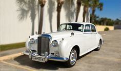 Diamond Package   1 - Mini Bus  1 - Super Stretch Limo  1 - Vintage Rolls Royce    Get us to Bourbon QUICK!