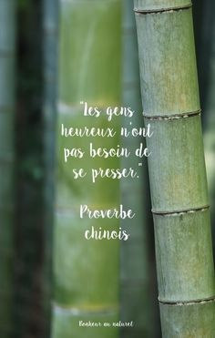 Fond d'écran // Citation Proverbe chinois French Words, French Quotes, Positive Mind, Positive Attitude, Small Words, Cool Words, Citations Couple, Quote Citation, Citation Gandhi