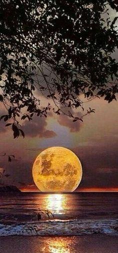 Full Moon landing.