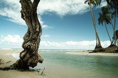 Las Terrenas Dominican Republic. @coronaextraeu