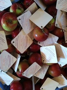 Favor cards attached to an apple, placed at every setting!