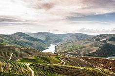 The Douro Valley, Home of fine Port Wine   The 19 Best Places to Visit in Portugal