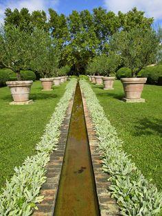 Big Game Hunting in Provence: The Amazing Gardens of Dominique Lafourcade | LA DOLCE VITA CALIFORNIA