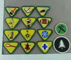 Lot of 14 Boy Scout Merit Badges Yellow With Green Trim And Two Others Cub Scouts, Girl Scouts, Boy Scout Sash, Cub Scout Patches, Boy Scouts Merit Badges, Cub Scout Activities, Scouts Of America, Vintage Boys, Blue Bird