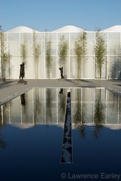 Reflecting Pool at NC Museum of Art: Raleigh, NC