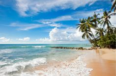 Stuck for things to do on your holiday to Barbados? Bored by the usual tourist hotspots? Read our Top 10 activities for a little adventurous inspiration. Caribbean Vacations, Best Vacations, Caribbean Cruise, Places To Travel, Places To Go, Bridgetown Barbados, Stuff To Do, Things To Do, Barbados Travel