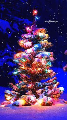 animated christmas tree gif in snow Christmas Tree Gif, Christmas Scenery, Beautiful Christmas Trees, Christmas Love, Christmas Images, Christmas Greetings, Christmas Wishes, Winter Christmas, Vintage Christmas