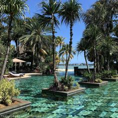 The best thing about pool time? It's any time here in Mauritius. 📷: @ papillon_travel.  #Shangrilahotels #Shangrilamauritius #Shangrila #Mauritius #poolside #pooltime #holiday #paradise #resort #travellife #bestvacations #photooftheday