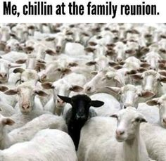 Me, chillin at the family reunion.