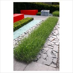 Modern clean lines and restrained planting