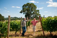 Evesham Wood Winery has 13 acres of volcanic soil in the Eola-Amity Hills AVA of the Willamette Valley.  They farm organically and are charter members of the Deep Roots Coalition which promotes non-irrigated vineyards.