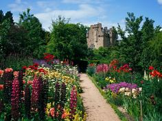 <p>Photo: Flower garden at a castle</p>