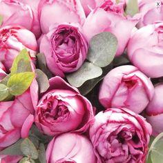 Bouquet Parfumé Yves Piaget