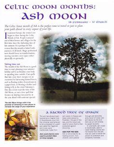 Celtic moon months Ash moon
