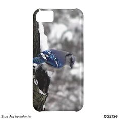 Blue Jay iPhone 5C C