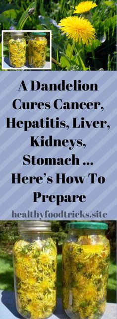 A Dandelion Cures Cancer, Hepatitis, Liver, Kidneys, Stomach … Here's How To Prepare - Hootricks World Natural Health Remedies, Natural Cures, Natural Healing, Herbal Remedies, Health And Beauty, Health And Wellness, Health Tips, Health Benefits, Natural Medicine