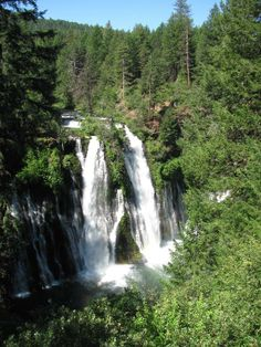 Campgrounds in Northern California: McArthur-Burney Falls Memorial State Park Camping Review - InfoBarrel