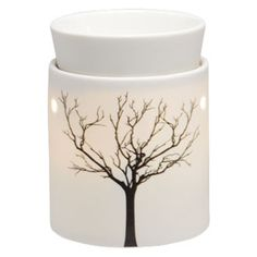Scentsy (wickless candles) for the european market. 220v warmers!!!
