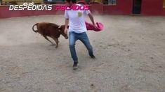 CAPEAS EN MALAGA TREMENDA COGIDA AL NOVIO www.despedidasdesolteroenmalaga.com