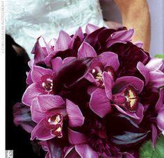 OMG I love this bouquet - purple orchids and calla lillies :)