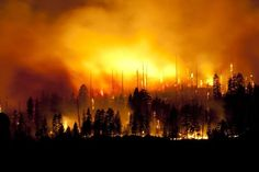 Q&A on Yosemite's Big Meadow fire Fire Tornado, Firefighter, Hero, Studio, Big, Fire Fighters, Studios, Firefighters