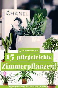 Büro Deko Ideen & Schreibtischdeko The great plant guide, 15 stylish and easy-care houseplants, # po