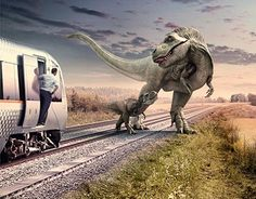 Campaign we did for the Norwegian Airport express Train. Airport Express, Runes, New Work, Campaign, Elephant, Behance, Train, Check, Animals