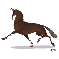 DHD 017: Pompous Dressage Horse