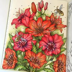 The Lilies ❤️ Sharing how I color this page on my YouTube Channel, link in my bio @colorvscolour . #tidevarv #hannakarlzon #coloringbook #målarbok #prismacolor #coloredpencil #coloredpencils #coloriage #colorir #塗り絵 #大人の塗り絵 #coloring #chrischeng #colorvscolour #chriscoloring #adultcoloringbook #adultcoloring