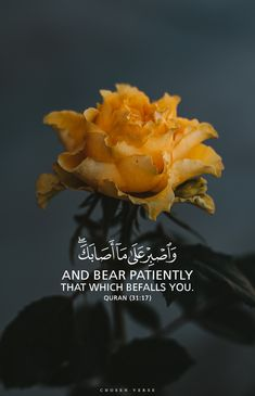 Islamic Visual Artist and Typographer Quran Quotes Love, Muslim Love Quotes, Quran Quotes Inspirational, Beautiful Islamic Quotes, Arabic Quotes, Quran Arabic, Islam Quran, Islamic Quotes On Death, Coran Quotes