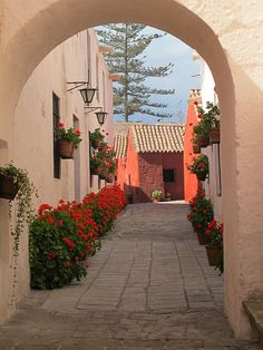 Picturesque alley at Santa Catalina Convent in Arequipa, Peru (by Four Seasons Garden).