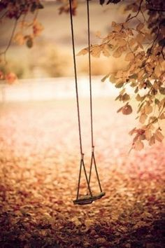 My dad always saw to it that you girls had a swing, The one was for Julia on the tree in their front yard. Gramma/pa got you big girls a big swing set in their back yard when you outgrew the tree swing. Autumn Day, Autumn Leaves, Autumn Song, Happy Autumn, Autumn Morning, Soft Autumn, Hello Autumn, Fall Winter, Neuer Monat