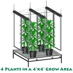 4x4 grow light system grow lights indoor grow lights indoor lighting grow lamps grow light kits led grow lights led grow lights for indoor plants
