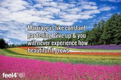 Marriage is like constant gardening. Give up & you will never experience how beautiful it grows.