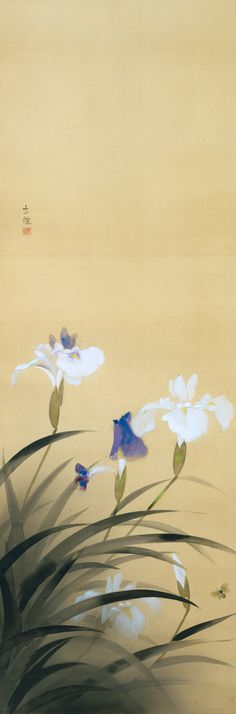 Iris Laevigata c. 1935 Color on silk, hanging scroll 126.0 x 41.5 cm ARTIST: Kobayashi Kokei (1883-1957)