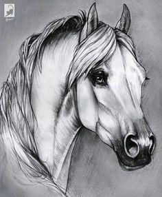horses artwork - horses art ` horses art drawing ` horses art painting ` horses art abstract ` horses art photography ` horses art design ` horses artwork ` horses art projects for kids Horse Drawings, Pencil Art Drawings, Art Drawings Sketches, Animal Drawings, Horse Pencil Drawing, Horse Head Drawing, Wild Animals Drawing, Arte Equina, Horse Sketch