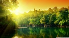Sunrise over the green nature and lake - HD nature wallpaper Image Nature, All Nature, Amazing Nature, Nature Sounds, Sunrise Wallpaper, Of Wallpaper, Amazing Wallpaper, Wallpaper Maker, Forest Wallpaper