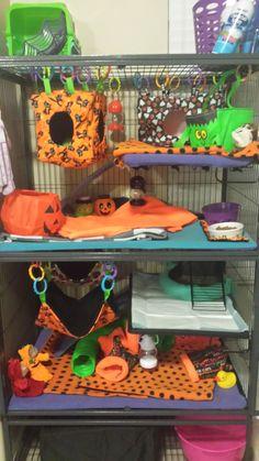 Halloween Ferret Cage